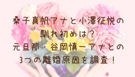 桑子真帆アナと小澤征悦が結婚予定?馴れ初めや元旦那との3つの離婚原因を調査!